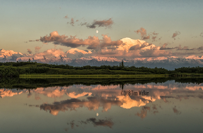Denali, Reflection, Alaska #7447