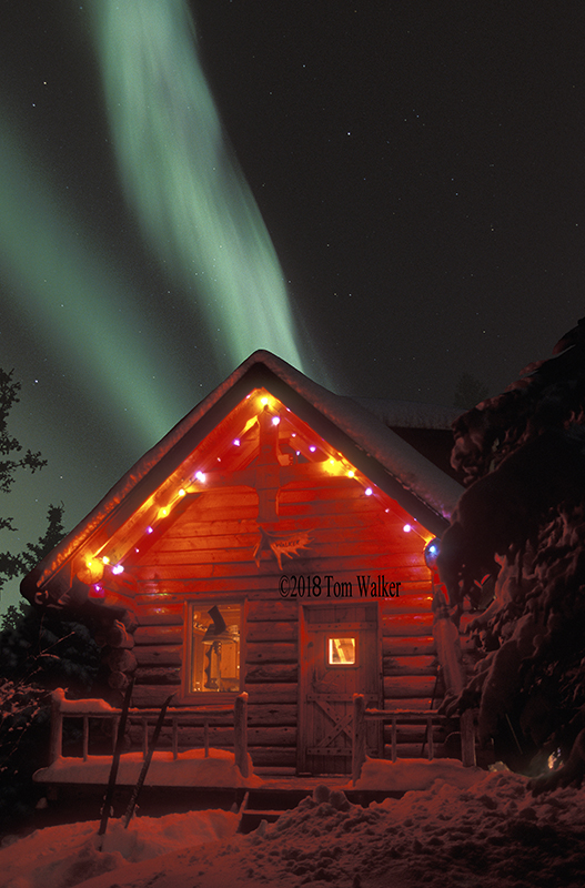 Aurora over log cabin, Alaska  #367